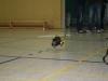 erstflug_super_puma_20120129_1928593302