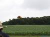 flugtag_oberseifersdorf_juni_2011_20120128_1361106891